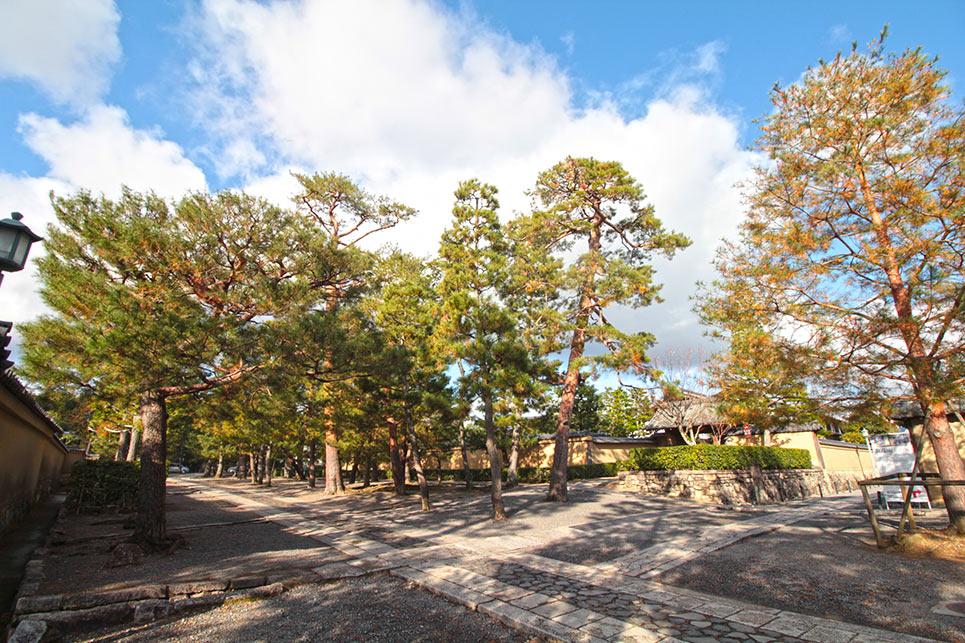京都の大徳寺の境内